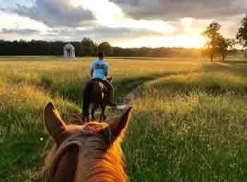 A tall grassy field with the sun on the horizon with a horseback rider ahead of another.