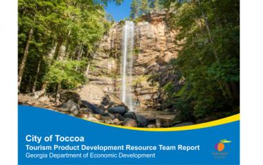 Toccoa TPD Report Cover